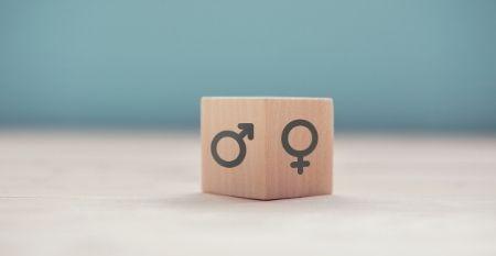 Catedra Feminismos 40 barometro e-igualdade